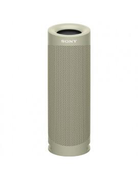 Cassa wireless SRSXB23C Sony
