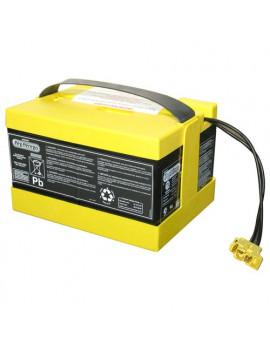 Batteria veicoli elettrici 24v-12ah Peg Perego